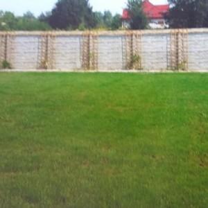 ogrodzenia betonowe 19